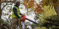 California Gov Gavin Newsom Signs Law To Ban Gas-Powered Lawn Equipment